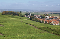 Champagne Jean Pernet - Le Mesnil-sur-Oger